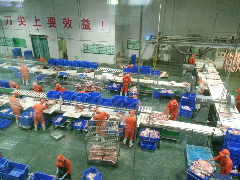 肉猪食品屠宰冷库工程项目