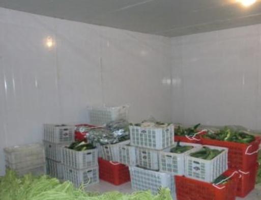 蔬菜恒温冷库