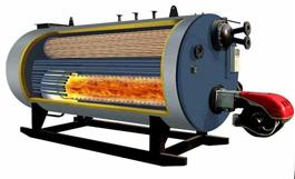 LS-生物質蒸汽鍋爐-CJ