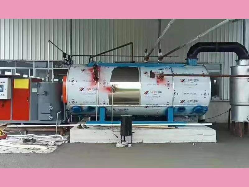 乐山卧式生物质蒸汽锅炉公司与攀枝花某农产品包装有限责任公司合作成功