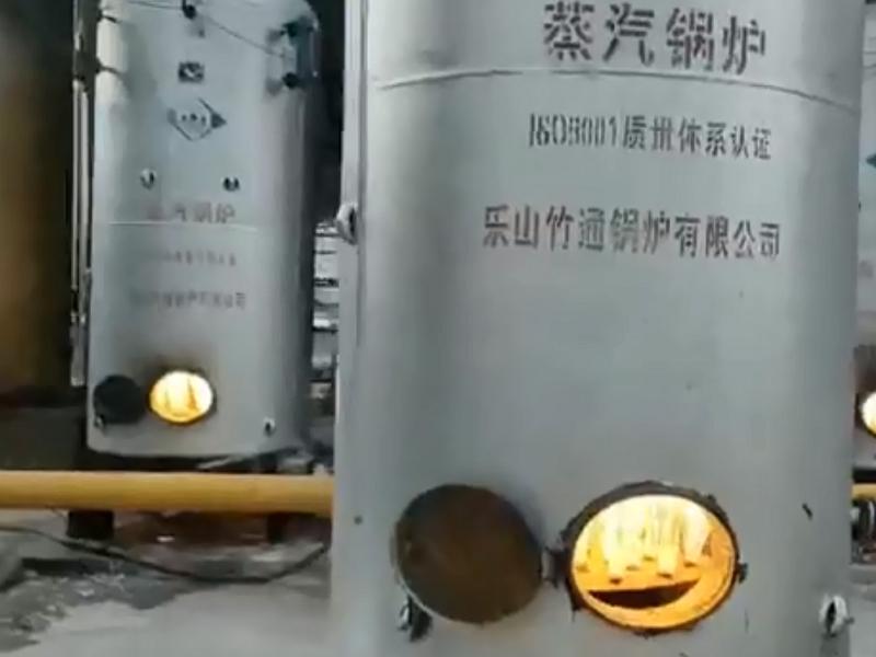 立式燃气锅炉产品视频