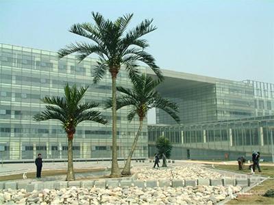 大型仿真椰子树