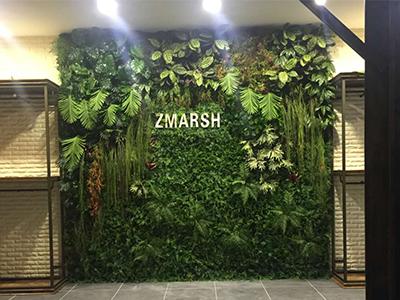 室内绿植墙造型