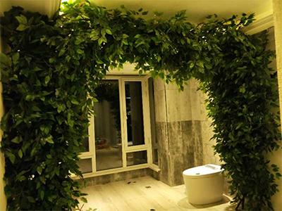 绿植墙造型