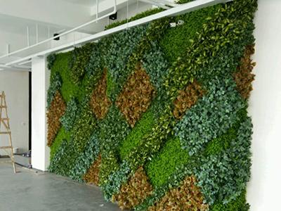 大型绿植墙造型