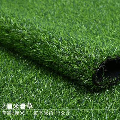 2厘米春草