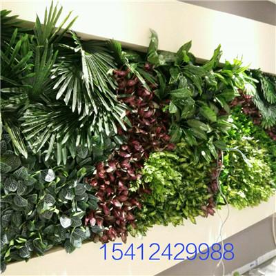 墙体绿植墙景观
