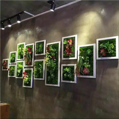 墙体绿植墙展示