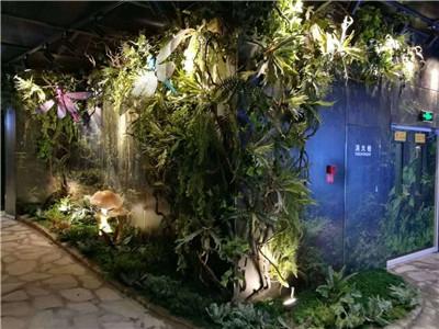 彩光绿植墙墙体