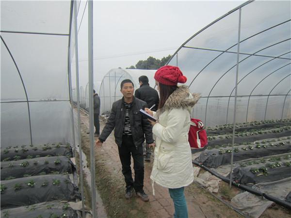 重庆日报记者采访