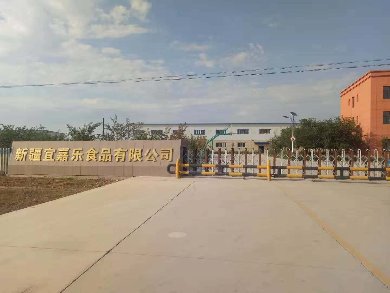 蘭州制冷設備公司在新疆速凍肉冷庫設計與安裝中取得的成就