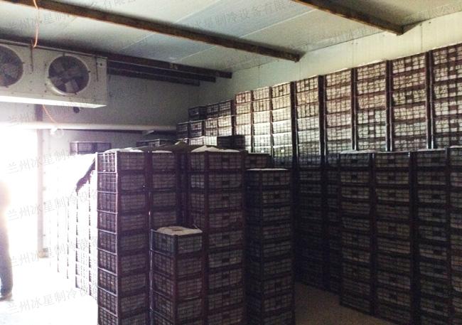 蘭州冷庫設計