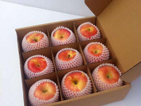 三分格水果盒