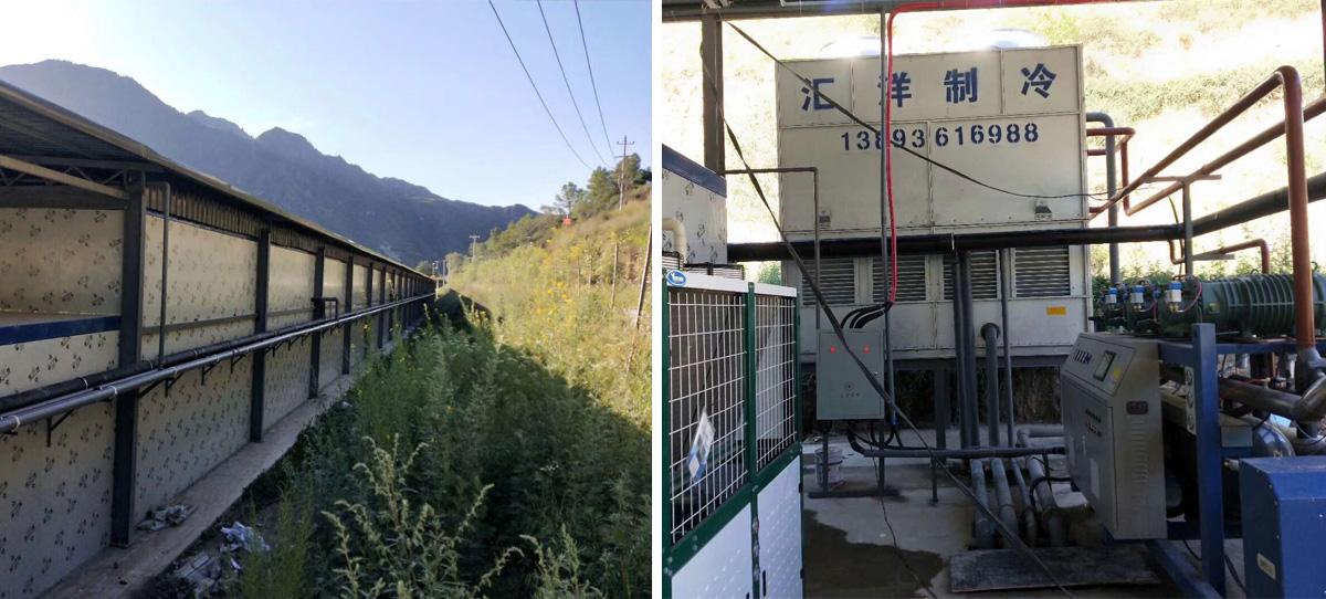 甘南西正开农业发展有限公司高原夏菜5000吨一期项目和10000吨二期项目