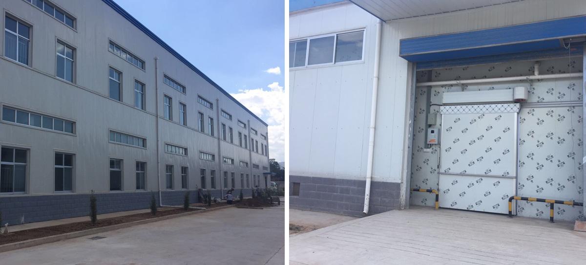 陇西保和堂药业5000吨当归片中药材储存库,一期二期项目