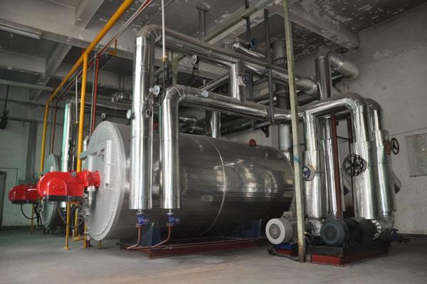 甘肃鼎盛提供电锅炉,燃煤锅炉项目