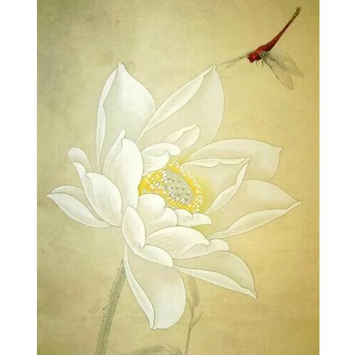 工笔-白色花朵