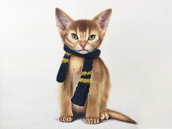 彩铅画小猫咪