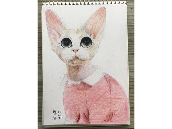 动物彩铅画