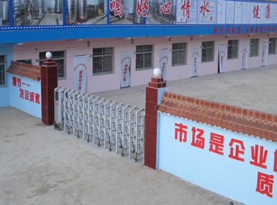 延宁静表情饮品无限公司装置桶装水灌装机