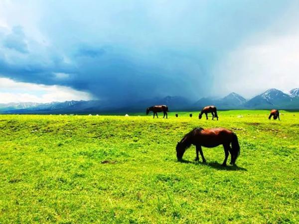 内蒙古风景