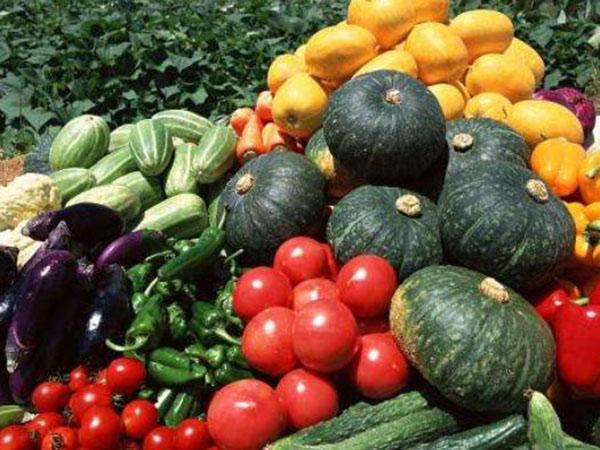 怎样做蔬菜配送