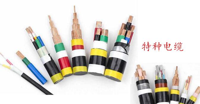 特種電纜批發