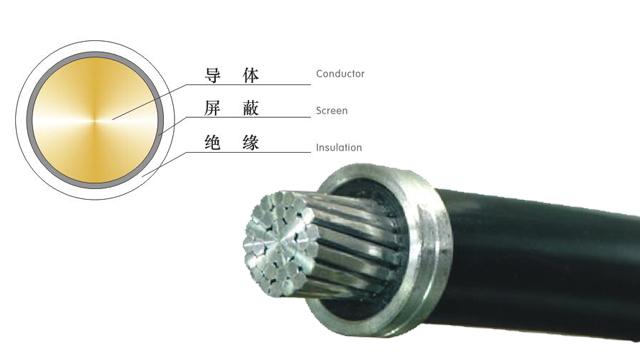 額定電壓0.61kV塑料絕緣平行集束電纜