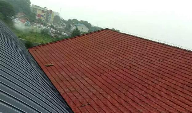 拱形钢结构屋顶