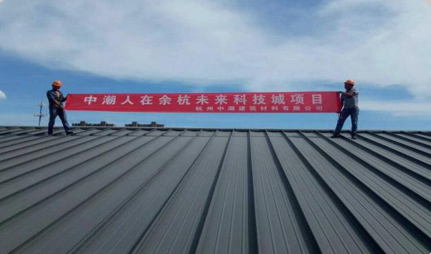 余杭未来科技城高立边ZC65-430工程