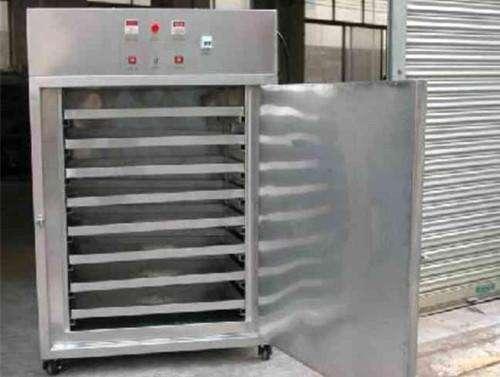 大型奇异果烘干机