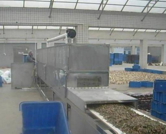 食品杀菌干燥设备
