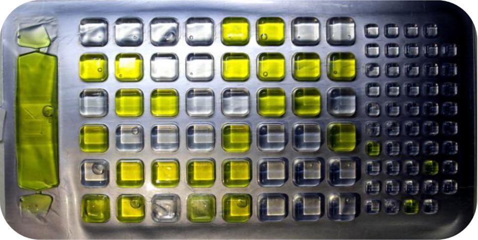 酶底物法定量盘