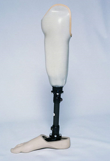 瑞昌市 小腿假肢的组成部分