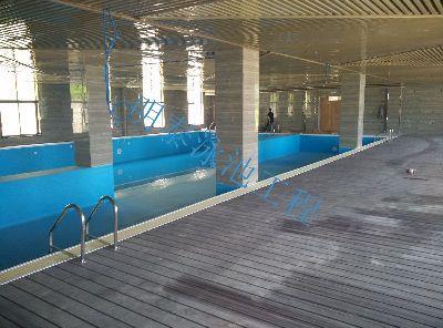 洋县农业生态园泳池(体育总局推广型)