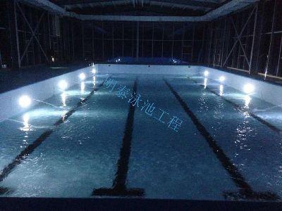 湖北钢围板整体泳池工程