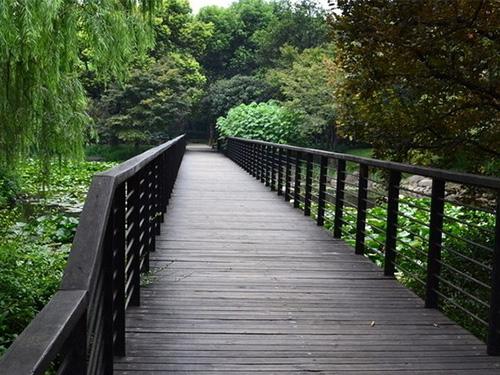 貴陽防腐木木棧道