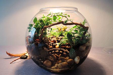 微观生态造景公司
