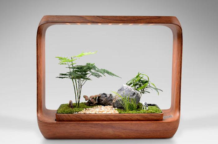 生态微景观制作