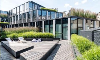 屋顶绿化-常用有哪些园林植物?