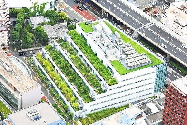 绿化屋顶如何减轻城市热岛效应?