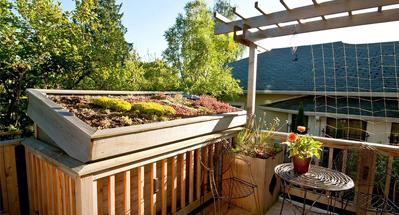 别墅屋顶花园设计