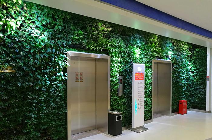 西安大话南门绿色植物墙