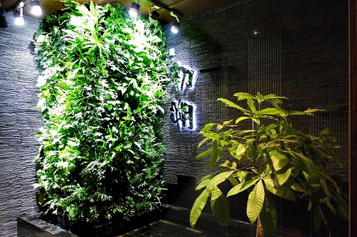 曲江茶楼垂直立体绿化