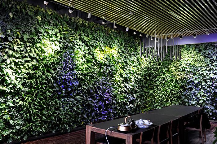 西京美术城室内植物墙