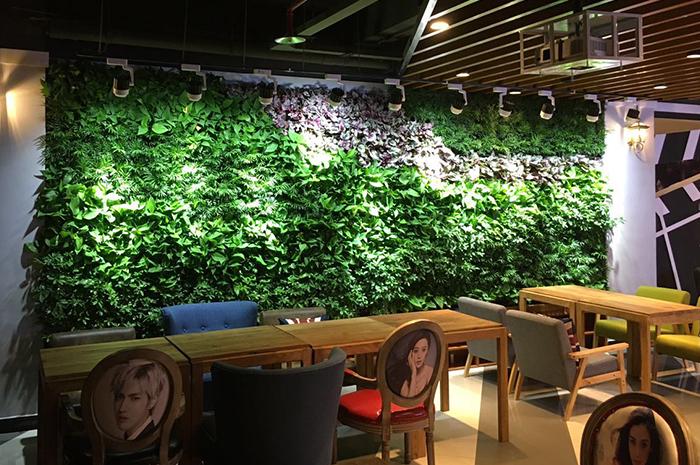 咸阳电影院绿植墙