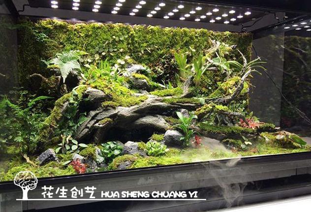 西安雨林造景需要的材料有哪些?你知道吗?