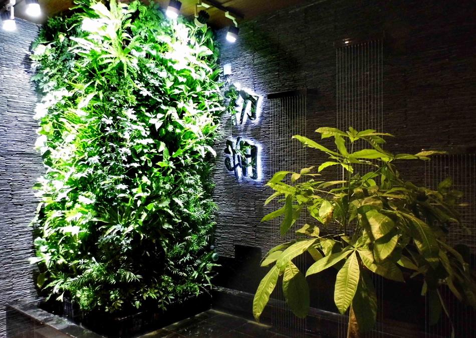活体植物墙大面积死亡的原因分析