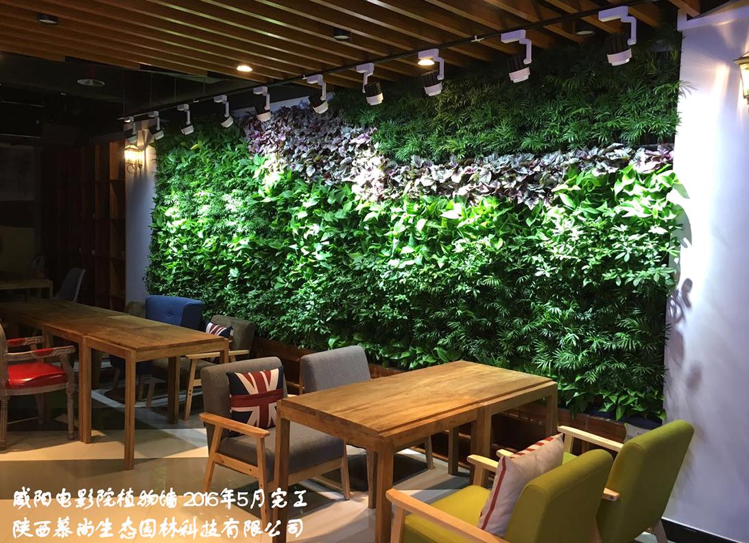 室外植物墙的几个功能导向内容是怎样的呢?