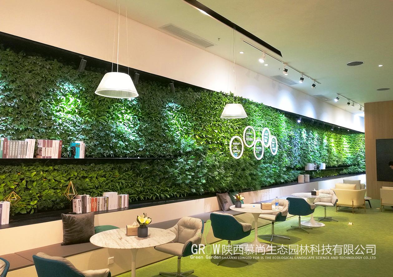 售楼部植物墙